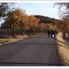Mokošin den 2005